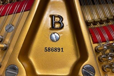 2010 Steinway MODEL B